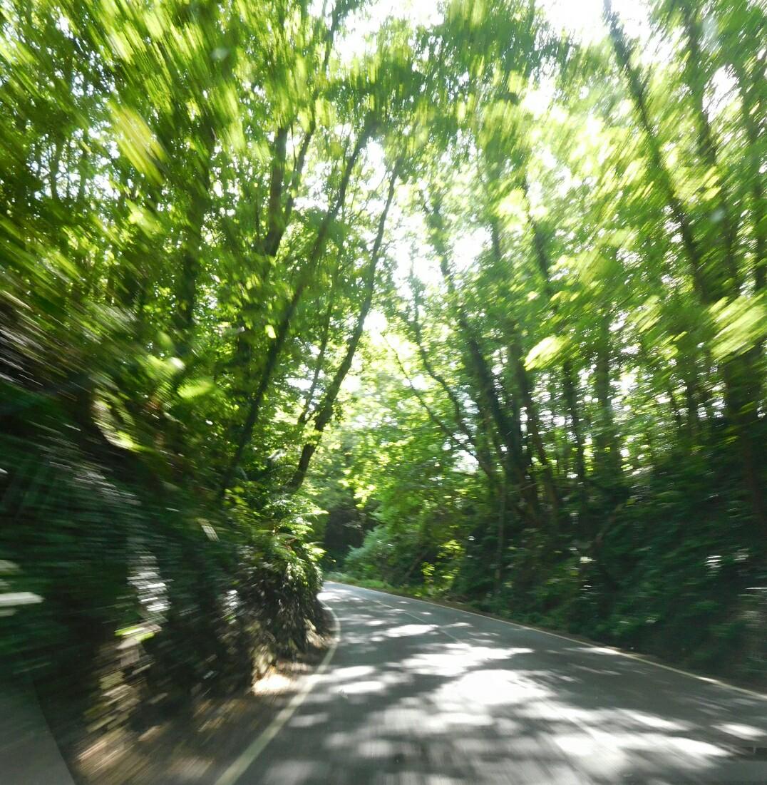Velocità risalente West Sussex
